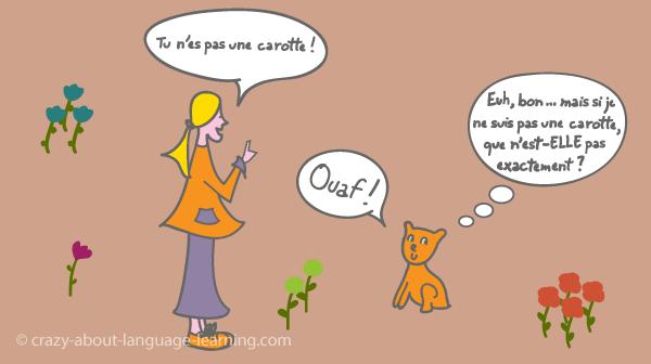 Comment les animaux nous parlent