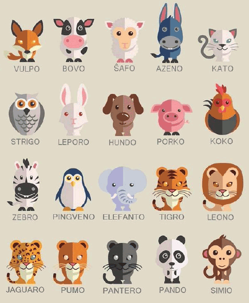 Animal names in Esperanto