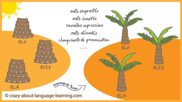 Des tours de Babel aux arbres de familles de langues