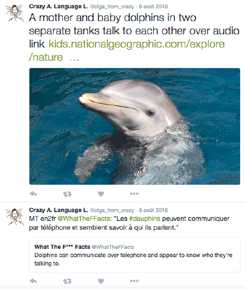 Dolphins talking