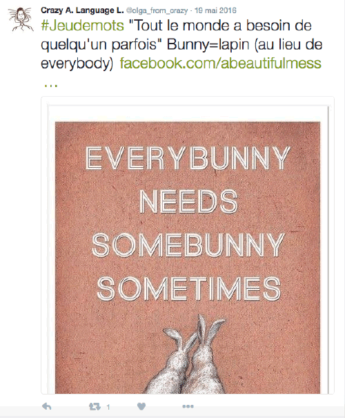 Jeu de mots Bunny